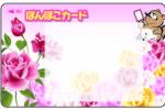 ぽんぽこカード 8周年記念セール